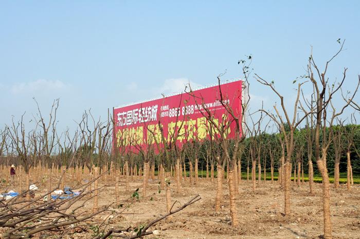 太湖大道巨型广告牌